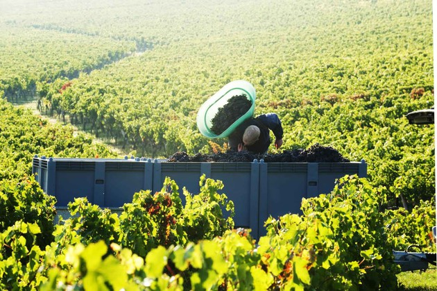 Farr Vintners, Berry Bros & Rudd and Majestic are calling on Bordeaux for better trading terms